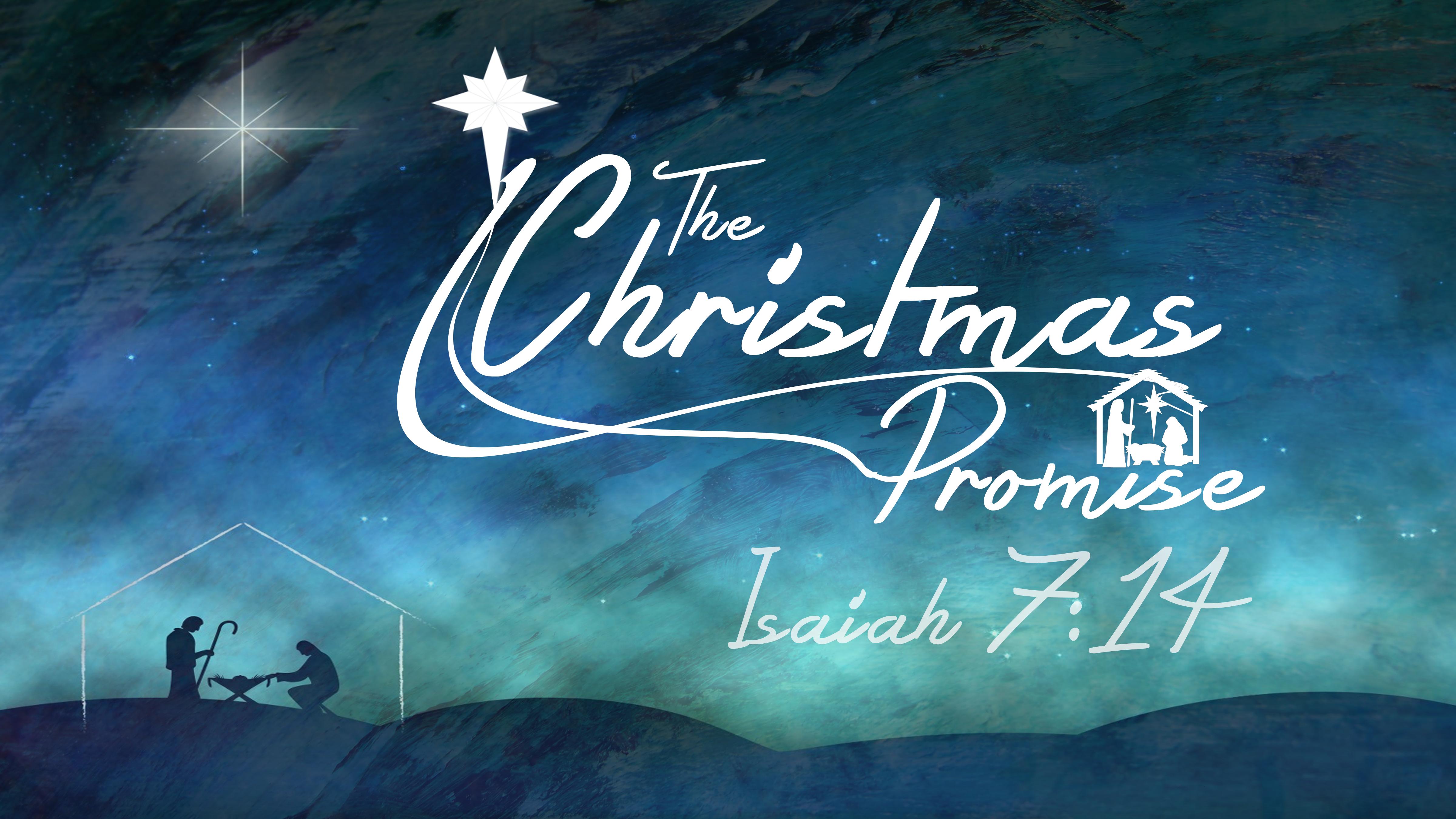 The Christmas Promise Book.The Christmas Promise First Baptist Church Russellville Ar